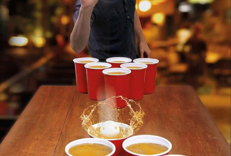Beer pong picture